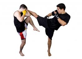 MMA Kingston Ontario   The New Hub of Mixed Martial Arts