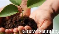 A New beginning.jpg