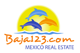 Baja123                                 Mexico                                                  Real                                   Estate
