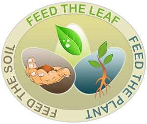Feed the Soil, Feed the Plant, Feed the Leaf