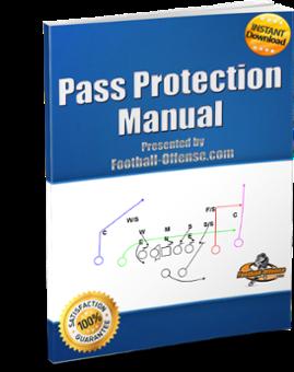 Pass Protection Manual eBook Image