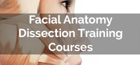 Facial Anatomy and Dissection Training