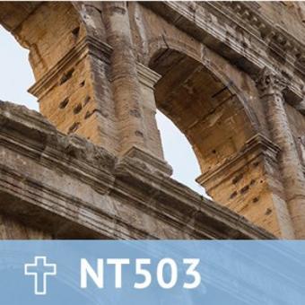 25, NT 503 The Epistles to the Romans thumbnail
