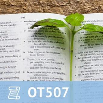 16, OT 507 The Book of Proverbs thumbnail