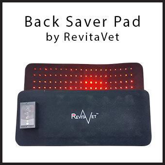 Equine BackSaver Pad thumbnail