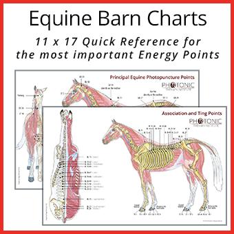 Equine Barn Charts thumbnail