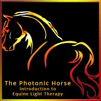 The Photonic Horse - Online thumbnail