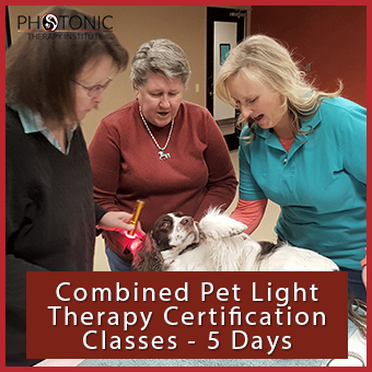 Combined Pet Certification Classes thumbnail