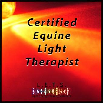 Certified Equine Light Therapist (CELT) thumbnail