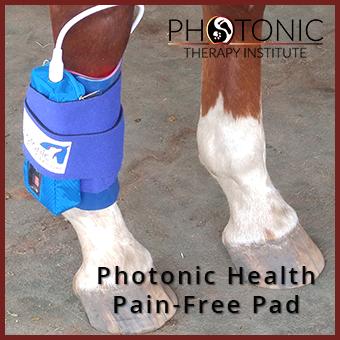Pain Free Pad System thumbnail