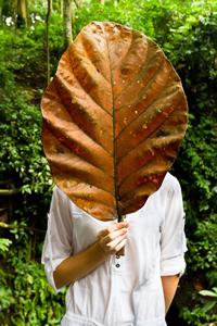 hiding_behind_leaf.jpg