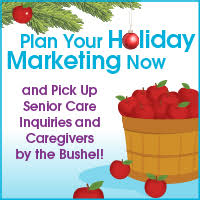 holiday home care marketing
