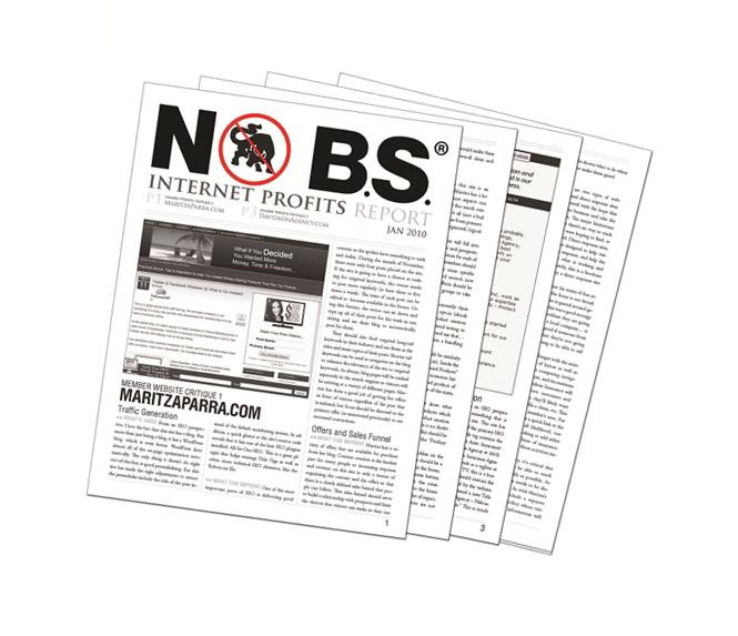 no bs internet profits newsletter image.jpg