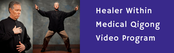 The Healer Within Qigong Video Program