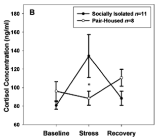 Baseline Stress Recovery & Cortisol Concentration