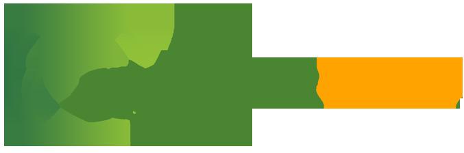 organik seo logo.png