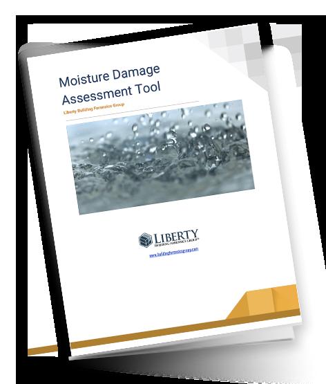 Damage Assessment Tool