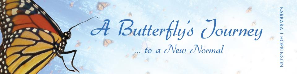 Butterflys Journey
