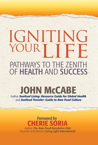 Igniting Your Life