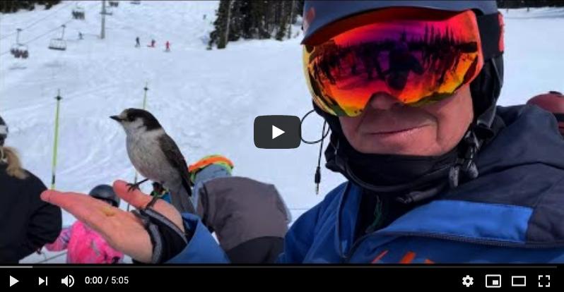 Scott's Transformational Video
