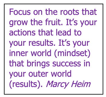 focus roots