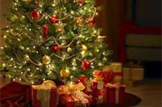 Gifts Under the tree.jpg