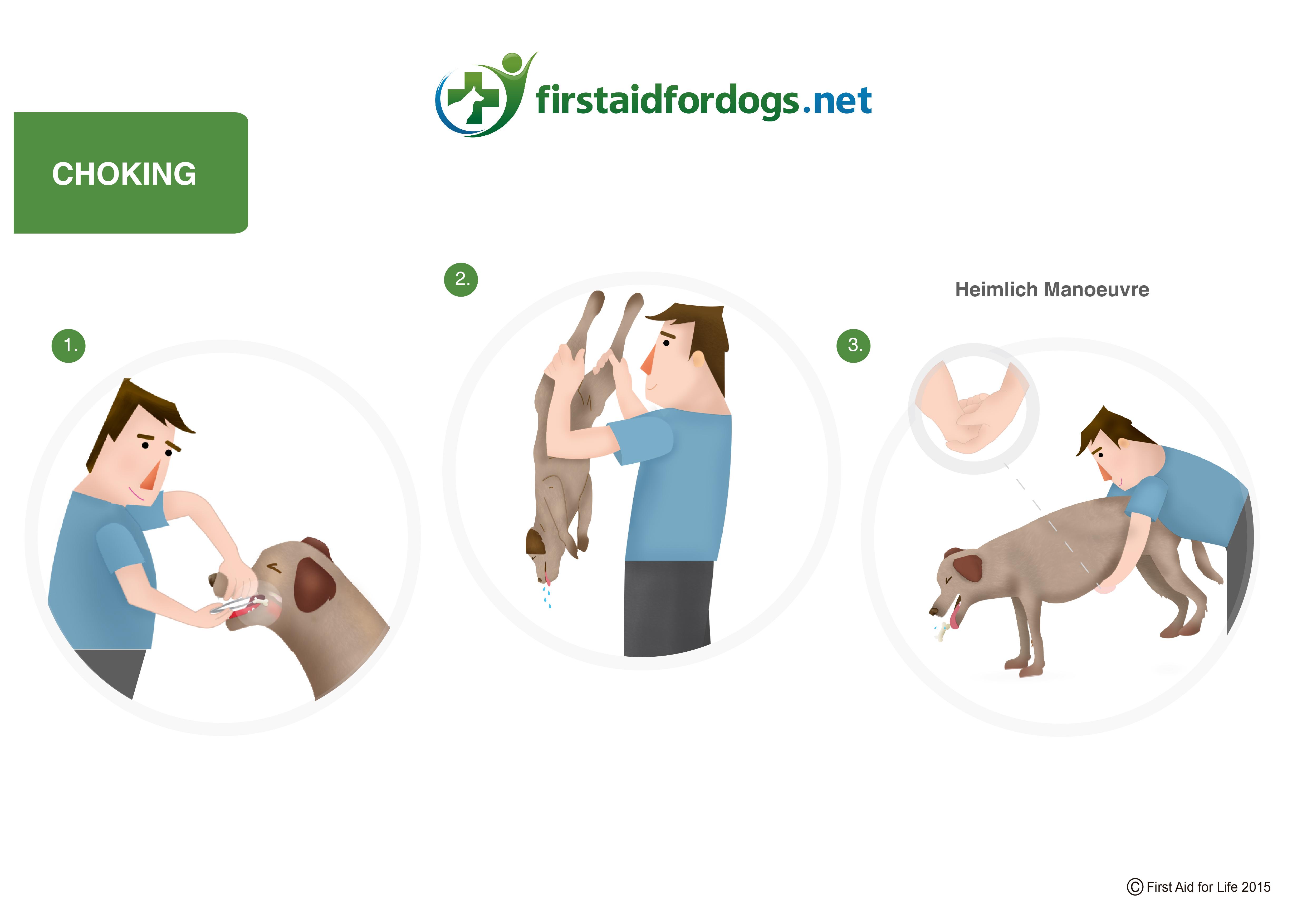 Dog Choking